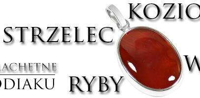 Kamienie Znaki Zodiaku – Strzelec,Koziorożec,Wodnik,Ryby